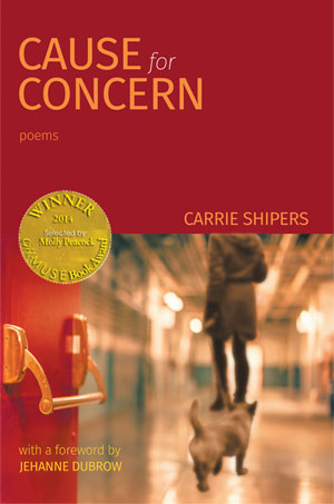 Cause for Concern - stories by Carrie Shipers